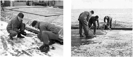 Snow on deck means snowballs and skylarking for Bob Lownsdale and Dinty Moore of Fox Division (l), but just more deck to clean for sailors of Sixth Division (r).